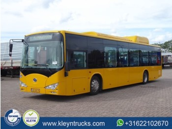 Stadsbus BYD EBUS 12 GREENCITY full electric